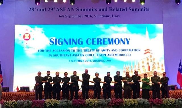 Những dấu mốc quan trọng Việt Nam - ASEAN - ảnh 8