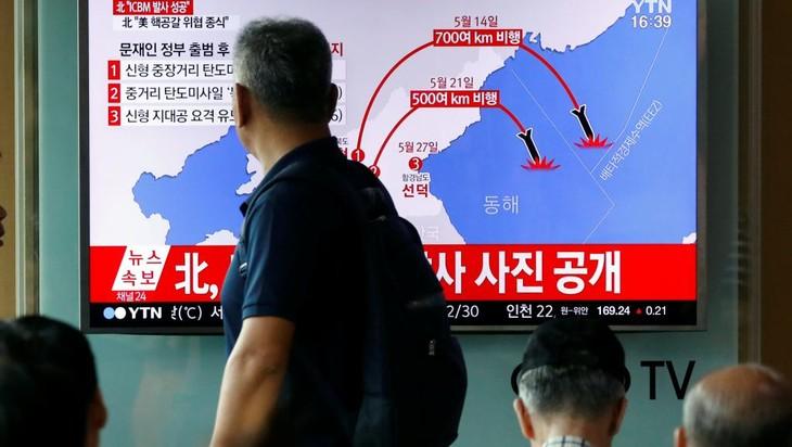Le Japon sort un livre blanc pointant le «nouveau degré de menace» nord-coréen - ảnh 1