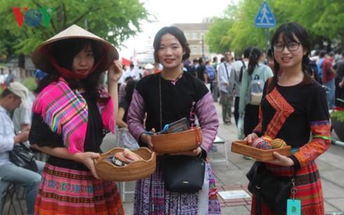 Ouverture de la fête vietnamienne à Kanagawa (Japon) - ảnh 1