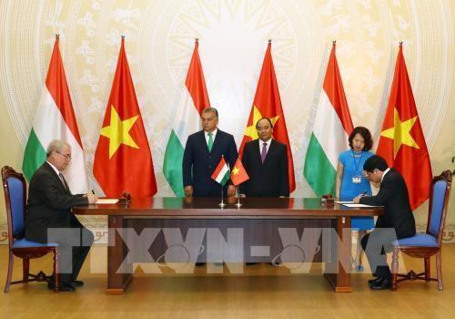 Déclaration commune Vietnam-Hongrie - ảnh 1