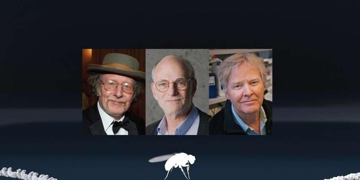 Le Nobel de médecine décerné à Hall, Rosbah et Young - ảnh 1