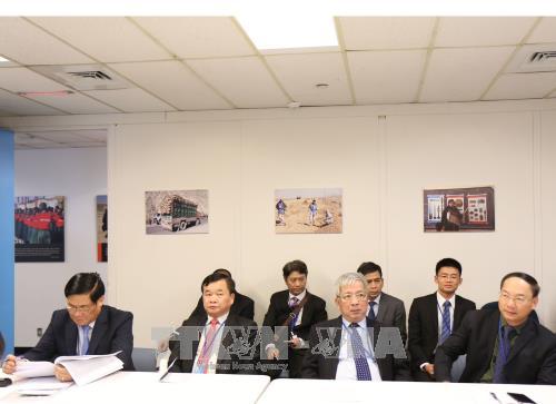 L'ONU facilite la participation du Vietnam aux opérations de maintien de la paix - ảnh 1