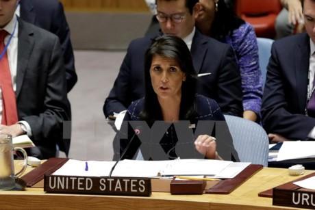 """Haley voit les Etats-Unis rester dans l'accord iranien """"pour le moment"""" - ảnh 1"""