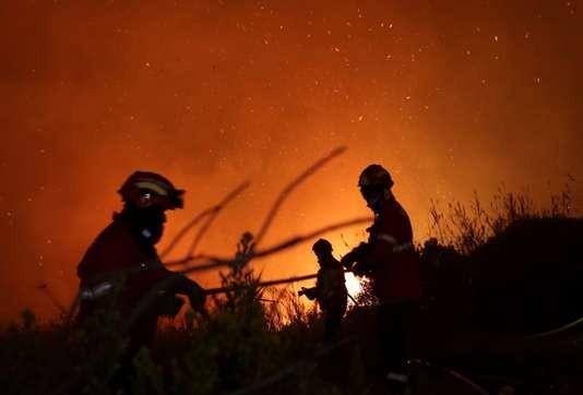 Incendies au Portugal et en Espagne: le bilan s'alourdit à 45 morts - ảnh 1