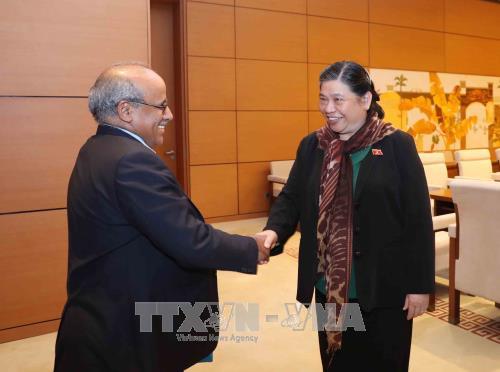 Tong Thi Phong reçoit le représentant de l'UNICEF au Vietnam - ảnh 1