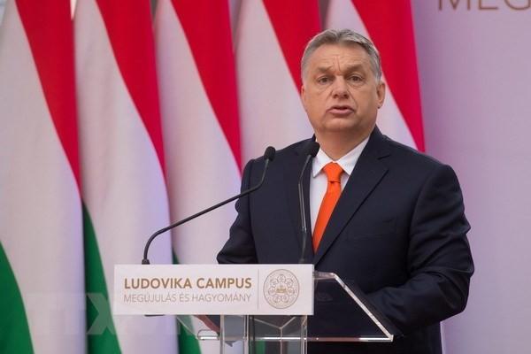 Hongrie : un troisième mandat pour Viktor Orban - ảnh 1