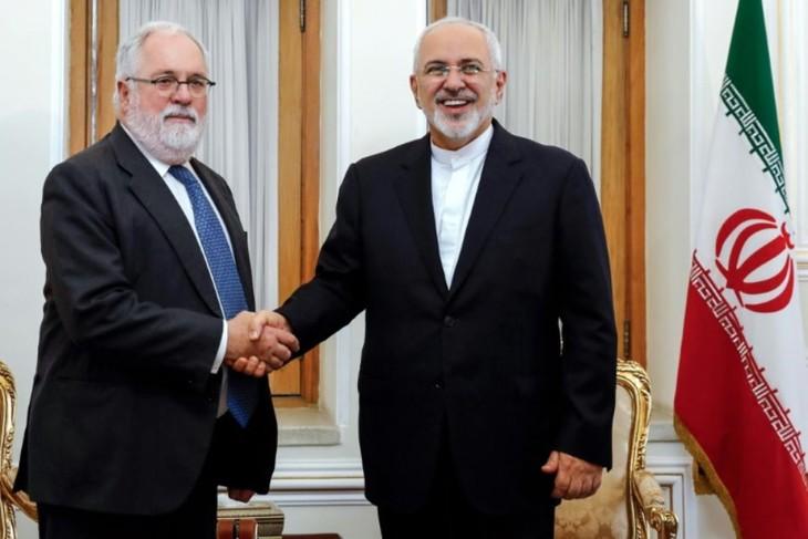 Accord nucléaire: l'Iran juge les promesses européennes insuffisantes - ảnh 1