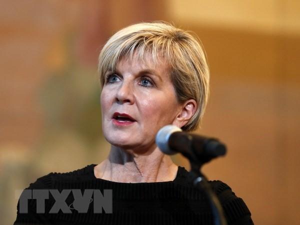L'Australie souhaite élargir ses relations avec le Vietnam - ảnh 1