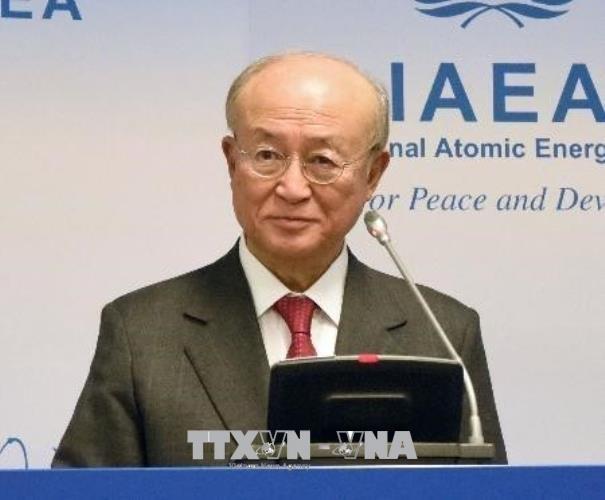 Nucléaire: pour l'AIEA, l'Iran respecte ses engagements - ảnh 1