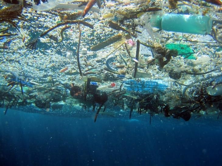 Vietnam responde al Día Mundial del Medio Ambiente y a la Semana del Mar y las Islas en 2018 - ảnh 1
