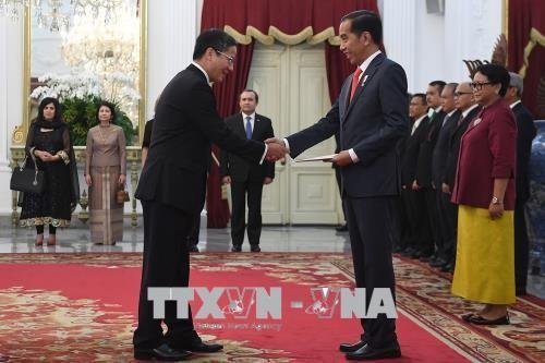 L'ambassadeur vietnamien reçu par le président indonésien - ảnh 1