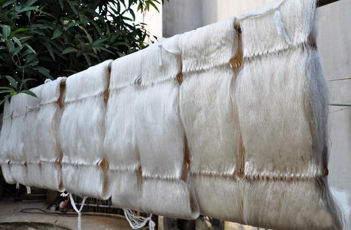 La sériciculture retrouve des couleurs à Thiêu Hoa - ảnh 2