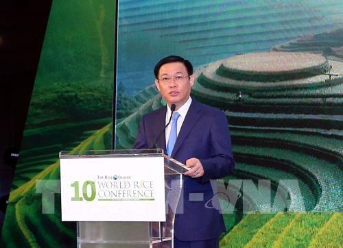 Ouverture de la 10e conférence internationale sur le riz - ảnh 1