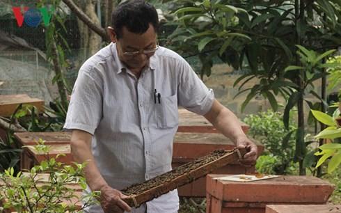 Hô Van Sâm,  un apiculteur passionné à Son La - ảnh 1