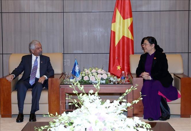 Un coordinateur résident de l'ONU au Vietnam reçu par Tong Thi Phong - ảnh 1