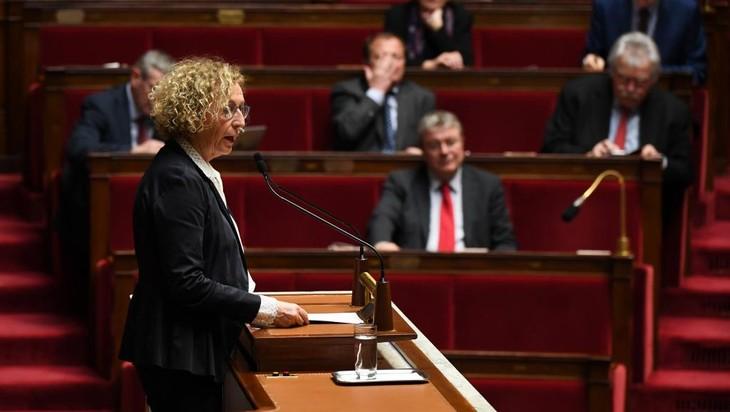 France: Le Parlement adopte des mesures d'urgence «Gilets jaunes» - ảnh 1