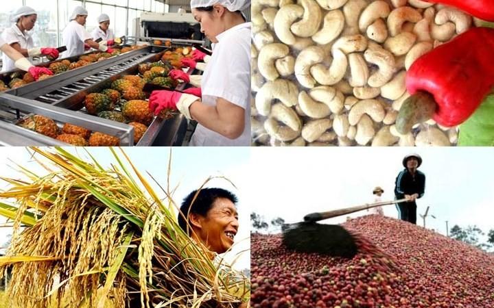 Vietnam : vers une exportation durable de produits agricoles - ảnh 1