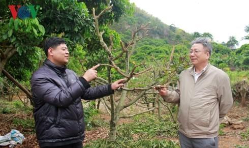 Pham Hân Hanh, le scientifique au service de l'agriculture - ảnh 1