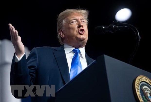 Donald Trump affirme que les démocrates ne peuvent pas le destituer  - ảnh 1