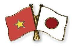 日本など各国駐在ベトナム大使館、テトを祝う - ảnh 1
