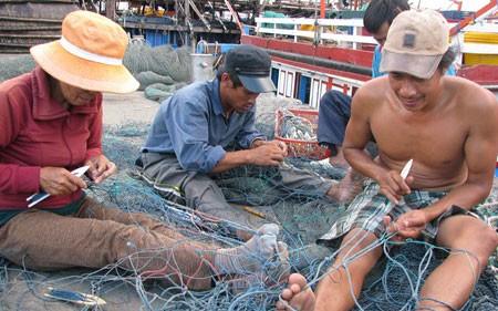 テトを控え、漁獲活動が活発 - ảnh 1