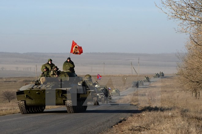 OSCE 親露派の重火器移動を確認 - ảnh 1