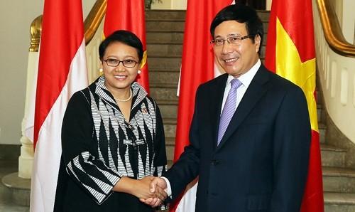 ミン副首相兼外相、インドネシア外相と会談 - ảnh 1