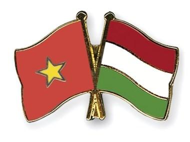 ベトナムとハンガリー、刑事上の司法互助協定締結へ - ảnh 1