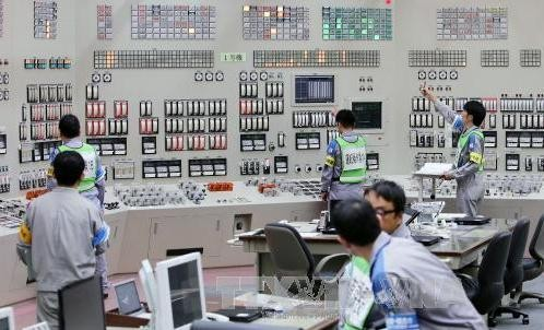 IAEA最終報告書「原発が安全との思い込み」 - ảnh 1