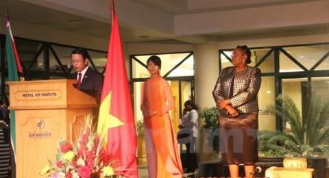 国外でのベトナム独立70周年を記念する活動 - ảnh 1