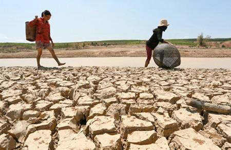 ベトナムとEU、気候変動対応で経験交換 - ảnh 1