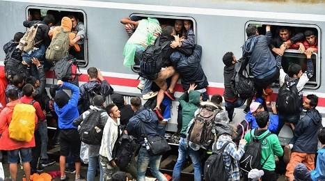 欧州各国が難民押しつけで協力困難に - ảnh 1