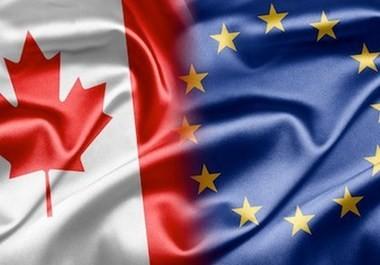 CETAの批准が難航 - ảnh 1