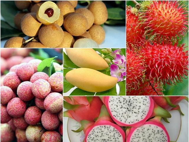 ベトナムのフルーツの価値向上 - ảnh 1