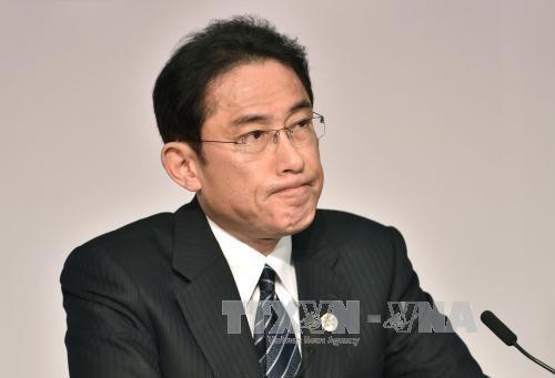 外交青書「竹島は日本固有の領土」明記に韓国が抗議 - ảnh 1