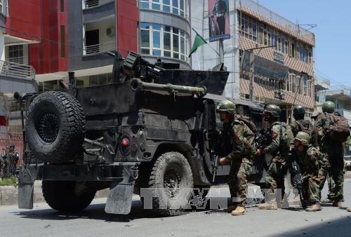 米国防総省・アフガンのIS指導者殺害 - ảnh 1