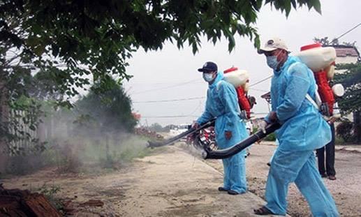 ダナン市で、動物由来感染症の予防対策第3回国際会議 - ảnh 1