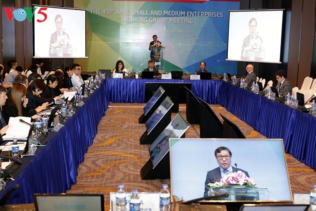 APEC2017、中小企業の発展に向けて協力 - ảnh 1