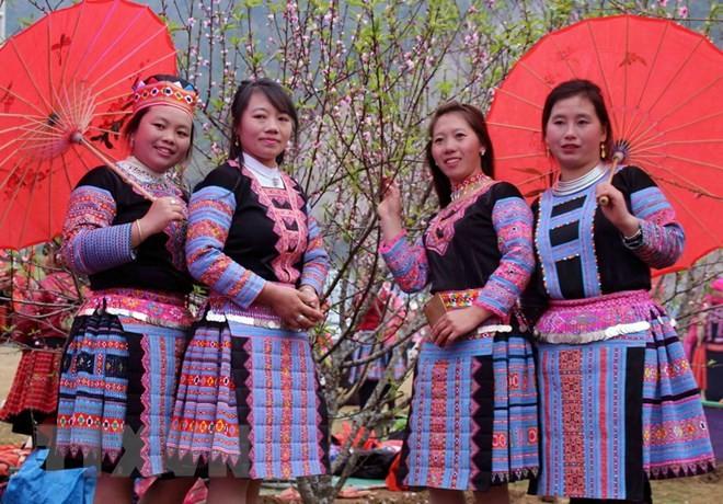 ソンラ省、初めて、桃の花祭りを開催 - ảnh 1