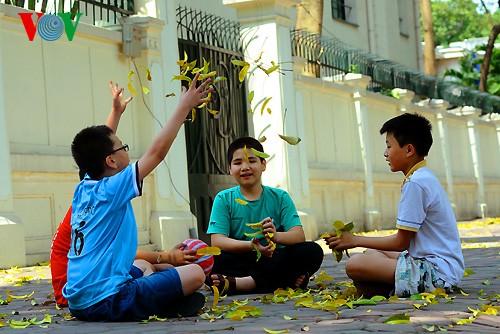 夏休みに子ども向けの様々な活動 - ảnh 1
