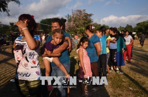 トランプ米大統領、引き離された不法移民親子の再会を指示 - ảnh 1