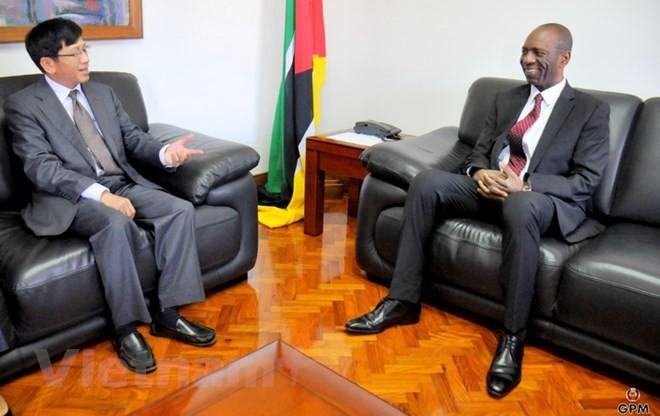 在モザンビークベトナム大使、同国の首相と会見 - ảnh 1