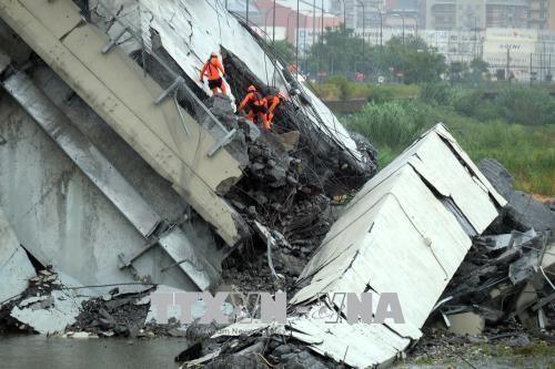高架橋崩落25人死亡 依然複数が不明 イタリア ジェノバ - ảnh 1