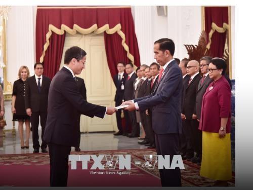 ベトナム・インドネシアの戦略的パートナー関係のチャンスを活動 - ảnh 1