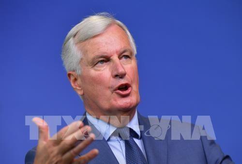 アイルランド国境問題で協議の用意、EU交渉官が英議員に表明 - ảnh 1