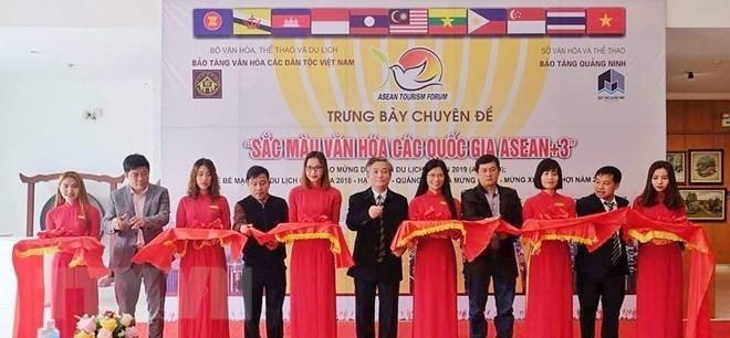 「ASEANと相手国の文化色彩」展 - ảnh 1