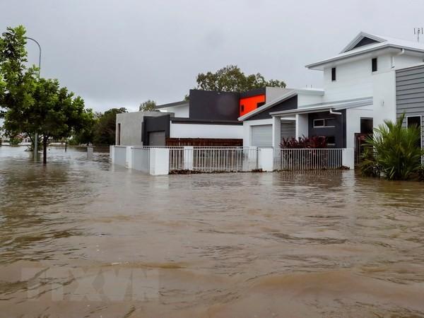 「100年に1度」の洪水で2万世帯に浸水危機、ワニやヘビも街へ 豪北東部 - ảnh 1