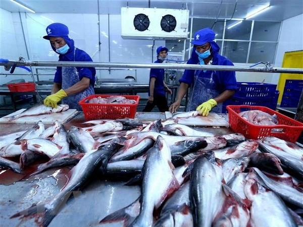 水産物輸出額を100億ドルにする目標 - ảnh 1