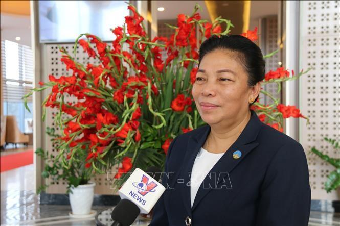 ベトナムとラオス、偉大で特別な団結友好と全面的協力関係 - ảnh 1