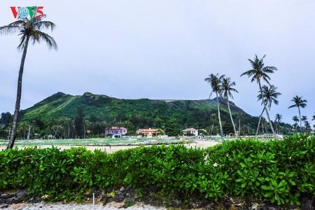 魅力的な観光地・リーソン島 - ảnh 2